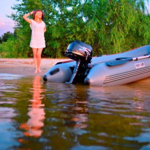 6HP 4-Stroke Outboard Engine pictures & photos