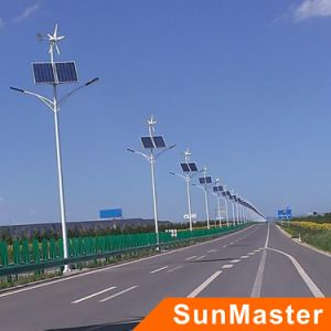 Wind and Solar Power Combination Streetlights (SFG02-30W) pictures & photos
