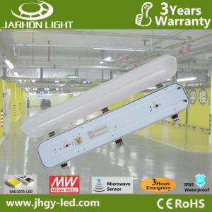 600mm 30W Rechargeable Emergency LED Light with CE RoHS