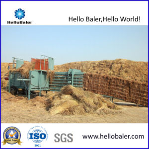 Horizontal Straw Baler for Biomass Plant (HFST8-10) pictures & photos