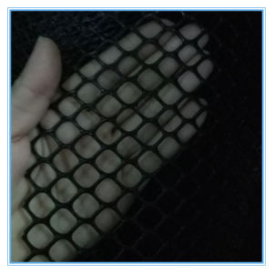 Alibaba China Plastic Mesh Supplier pictures & photos