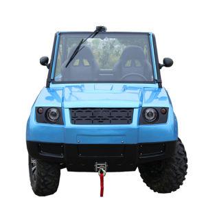 EEC Approved 800cc 4WD UTV (DMU800-01)