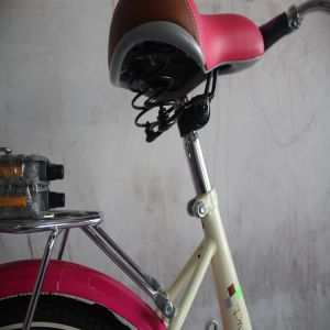 Hot Sale Rode Bike Series (MTB-009) pictures & photos