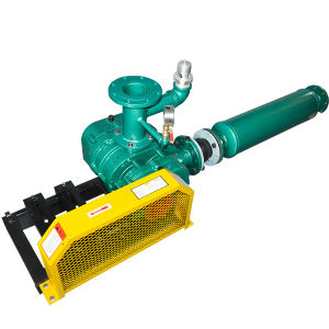Low Price Water Ring Vacuum Pump pictures & photos