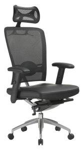 Office Chair (DH5-811ML)