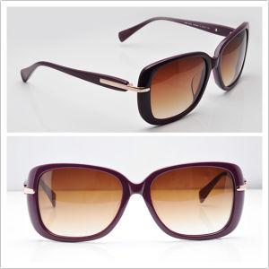 Designer Sunglass/ Men Sunglasses/ 2013 New Sunglasses Spr 080s Wine pictures & photos