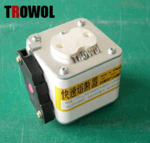 Semiconductor Fuse (RS8 P2m105N)