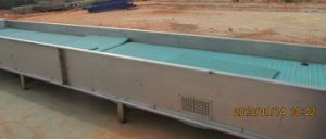 Belt Conveyer for Conveying Different Fruit pictures & photos