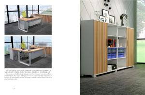 Kintig Castro Serie New Fashion European Style Simple Soho Furniture Office Furniture Office File Cabinet