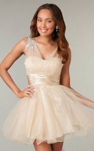 2014 Homecoming Formal Evening Dresses (ED14016) pictures & photos