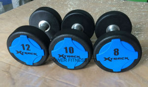 Xtrack Urethane Solid Color Dumbbell pictures & photos