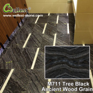 Natural Black Marble Ancient Wood Marble for Floor/Flooring/Wall Cladding pictures & photos