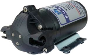 Self-Sriming Pump 100gpd