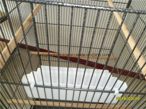Buy Cheap Birdcage/Parrot Cage pictures & photos