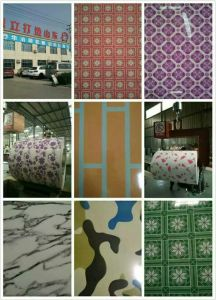 China Building Color Coated Steel PPGI Coils Fully Hard pictures & photos
