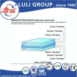 Film Faced Plywood/Marine Plywood/Shutteringplywood/Waterproof Plywood pictures & photos