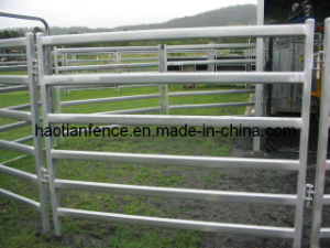 30X60mm Oval Pipe Galvanized Cattle Panel pictures & photos