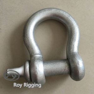Us Spec Forged Carbon Steel Shackle pictures & photos