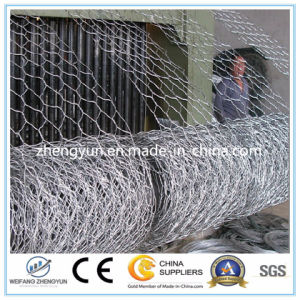 Hot Dipped Galvanized Iron Wire Woven Hexagonal Mesh Gabion Box pictures & photos