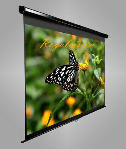 Projector Screen with Wall Mounted pictures & photos