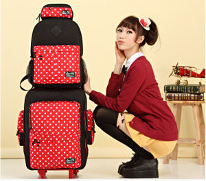 Leisure Trolley Bag/Backpack/Beauty Case for Young People pictures & photos