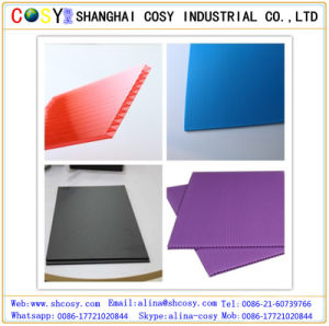 PP Hollow Sheet for Printing and Packing pictures & photos