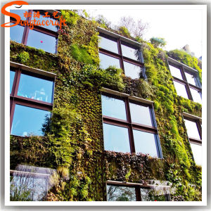 Outdoor Decorative Fake Plastic Artificial Plant Grass Wall pictures & photos