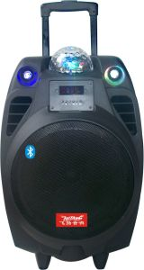 10inch Party PA Speaker with Wireless Remote Control Cx-10 pictures & photos
