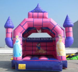 Inflatable Playground for Your Hire Business (B1103) pictures & photos