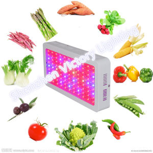 300W Square LED Grow Light for Plants pictures & photos