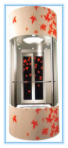 Low Cost Passenger Lift for Small Homes Without Machine Room pictures & photos