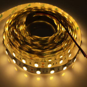 Ce Approved High Bright 5050 Single Color/RGB LED Strip Light pictures & photos