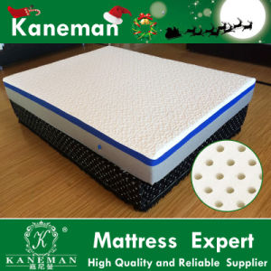 Relax Natural Latex Mattress in a Box pictures & photos