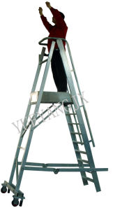Aluminum Step Castellar Moveable Ladder pictures & photos
