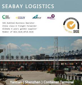 Hong Kong Logistics Shipping Agent pictures & photos