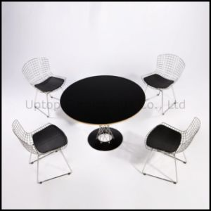 Meeting Room Replica Bertoia Wire Chair Noguchi Table (SP-CT392) pictures & photos