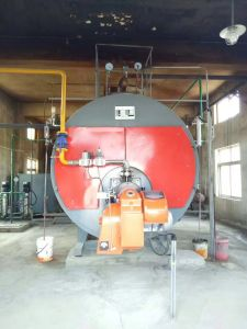Wns Series Natural Gas Fired Steam Boiler From China pictures & photos