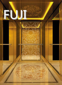 Elegant Noble Series Passenger Elevator/ Lift pictures & photos