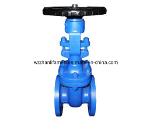 DIN Cast Steel Gate Valve F4 (Z41H-F4)