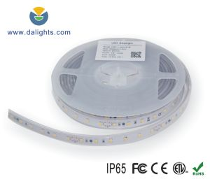 SMD3528 Flexible LED Strip pictures & photos