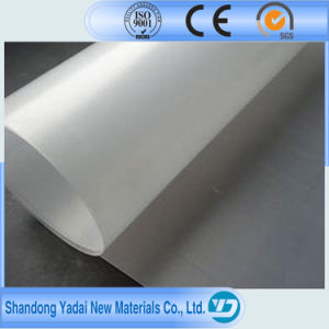 High Quality Liner Factory Price/Geosynthetic Product /Fish Farm Pond Liner HDPE Geomembrane pictures & photos