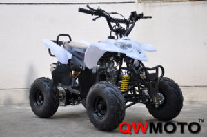 50CC/70CC/90CC/110CC/125CC ATV Quad Bike (QW-ATV-02A)