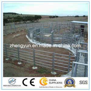 Metal Corral Horse Fencing Panels pictures & photos