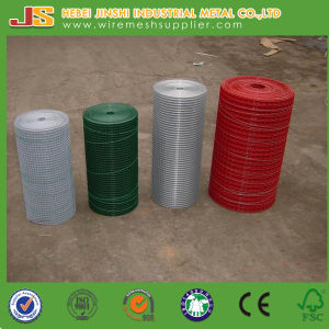 Cheap Fence, Galvanized Welded Wire Mesh pictures & photos