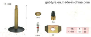 H-1003 Gt Valves for Car and Light Truck pictures & photos