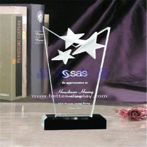 Custom Clear Acrylic Award Plaques Crystal Award pictures & photos
