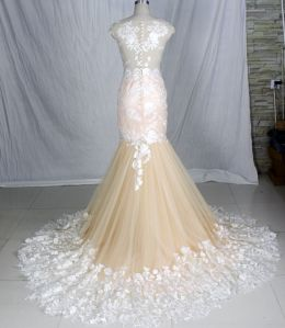 Champagne Wedding Dress Sheer Top Lace Tulle Wedding Gowns H147235 pictures & photos