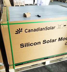 Tier 1 World Famous Brand 265W Canadian Solar Panels pictures & photos