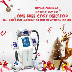 Skin Tightening Fat Freezing Cryolipolysis Machine with 3 Interchangeable Cryo Handles pictures & photos