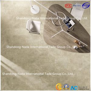 600X600 Building Material Ceramic White Body Absorption Less Than 0.5% Floor Tile (GT60513) with ISO9001 & ISO14000 pictures & photos
